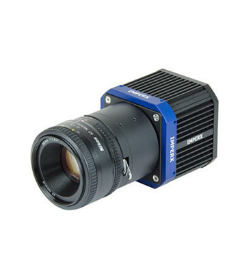 T2040 CCD 4 MP CoaXPress Color